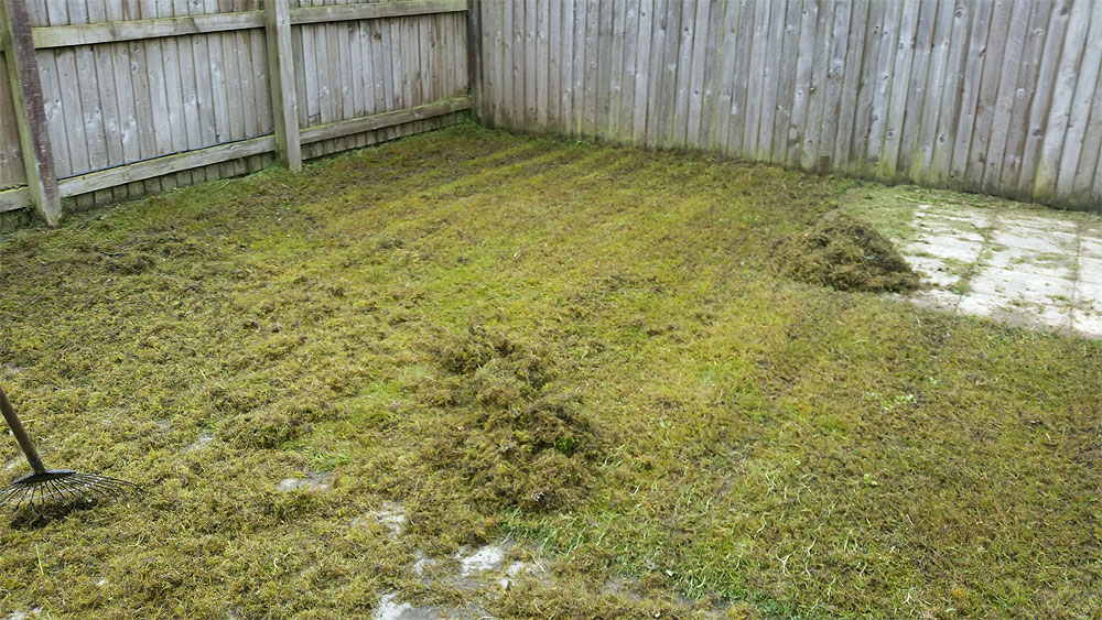 De-Thatching Lawns