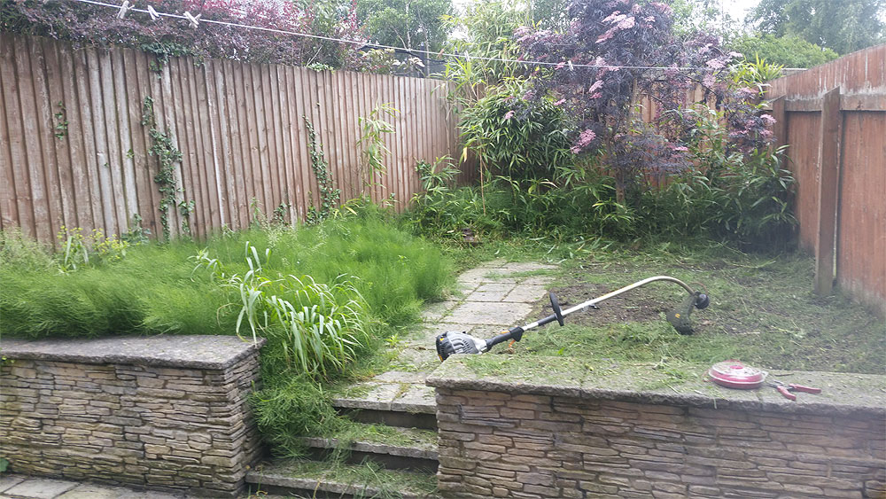 Overgrown garden in Bolton needs tidying up